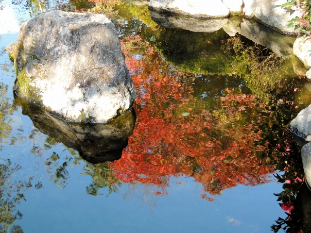 N6804池に映る紅葉