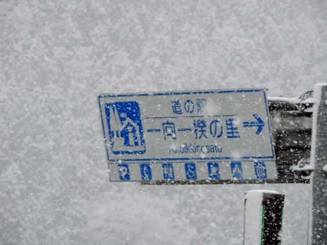 N6909吹雪く