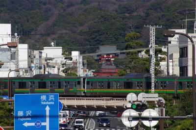 s-IMGP6554.jpg