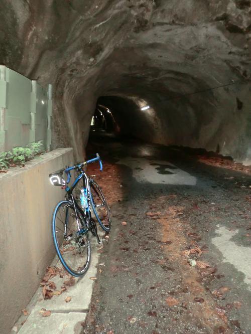 渡辺町の素掘りトンネル・6