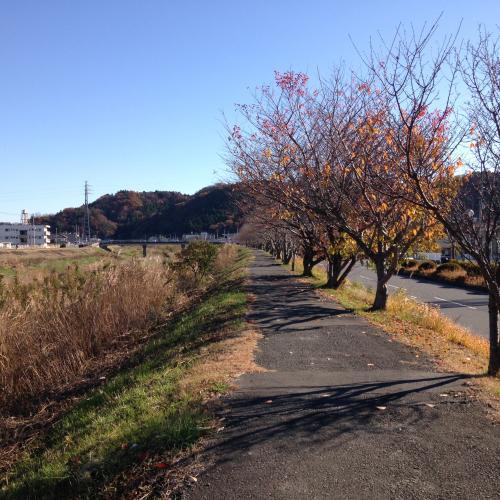 秋冷日の通勤・5