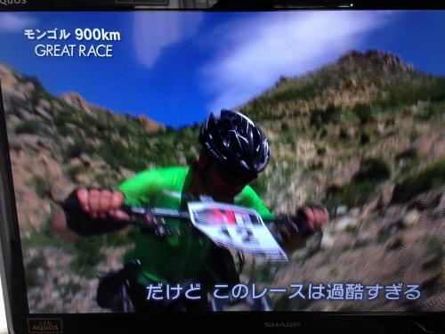 【グレートレース900km】・8