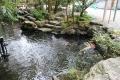 猿田彦神社子宝池