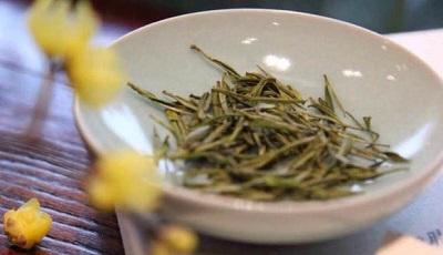 蝋梅安吉白茶
