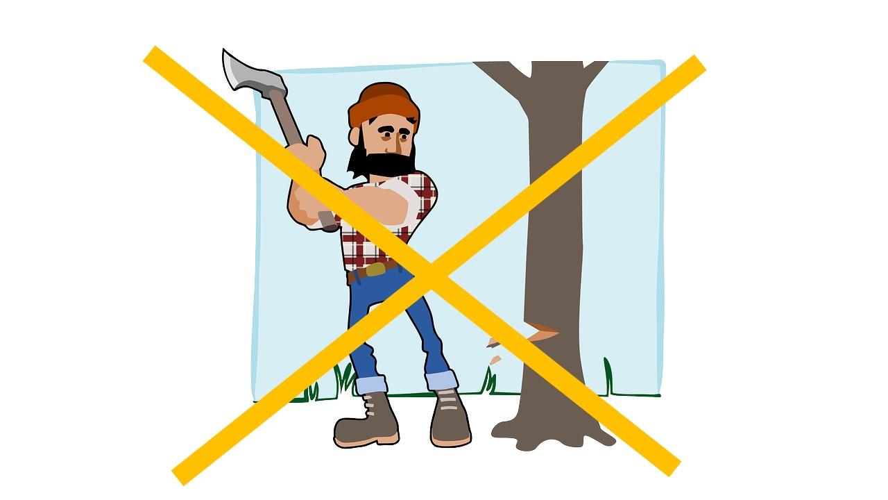 無断伐採禁止!