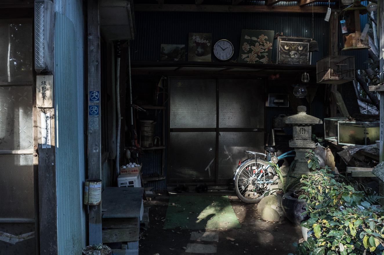 151219白井 (2 - 1)-28