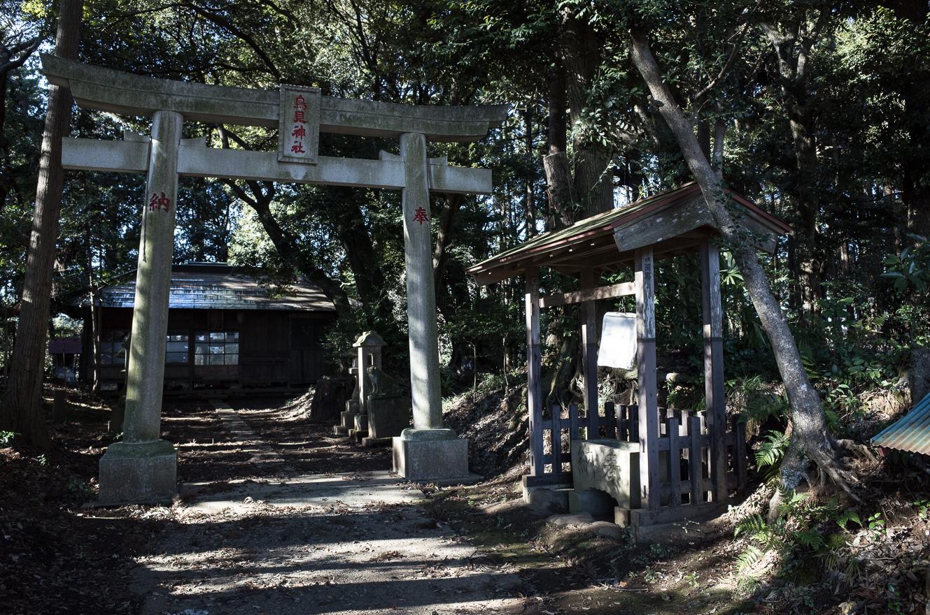 151219白井 (2 - 1)-45