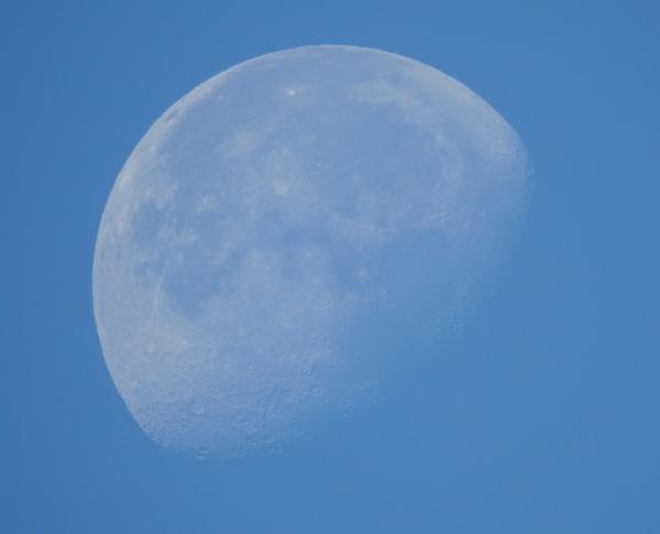 151117昼間の月