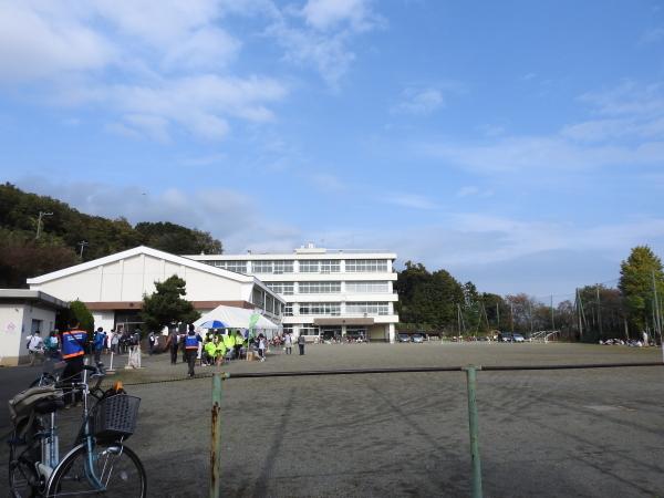 151122小田原ツーデーマーチ0011