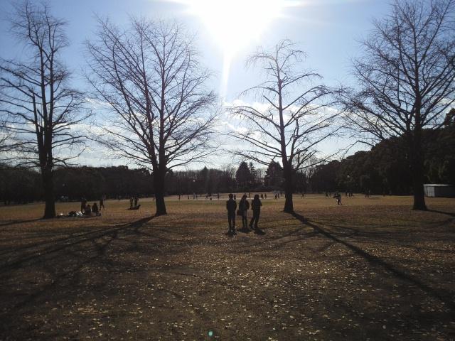 151227所沢航空記念公園02