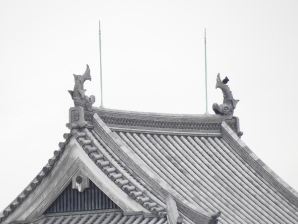 160217 160212 関ヶ原~長浜0012