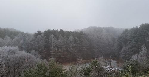 20160108_霧氷(6)