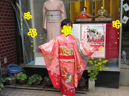 2016miharahinamatur2.jpg