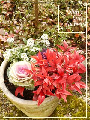garden2015-122.jpg