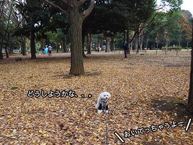 151215_5.jpg