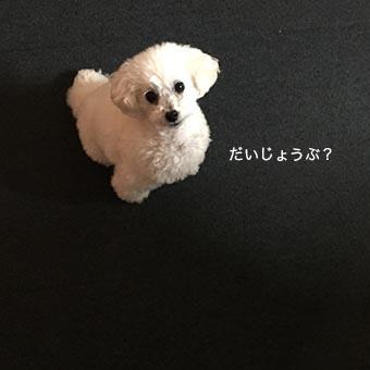 160214_1.jpg
