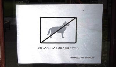 P6060678 - コピー