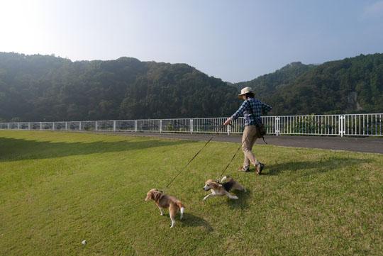 004朝の散歩2