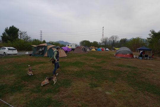 024夕方のキャンプサイト