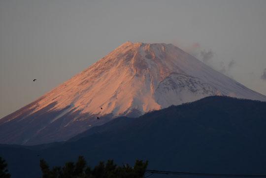 010富士山
