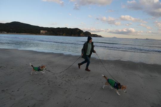 203海岸散歩