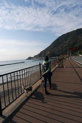 004海沿いを