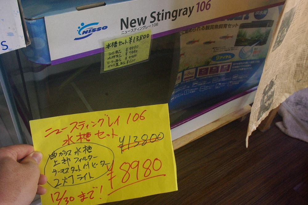 IMGP569501.jpg
