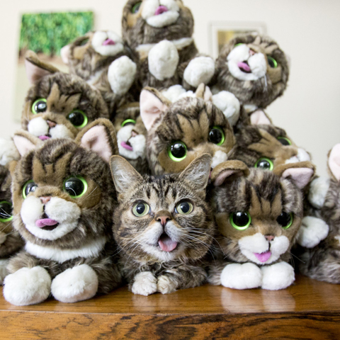 a-pile-of-BUBS