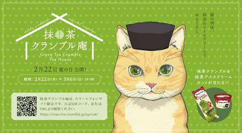 bnr_campaign_rikyu