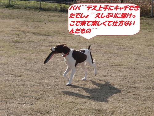 P1110014+(2)_convert_20160112083744.jpg