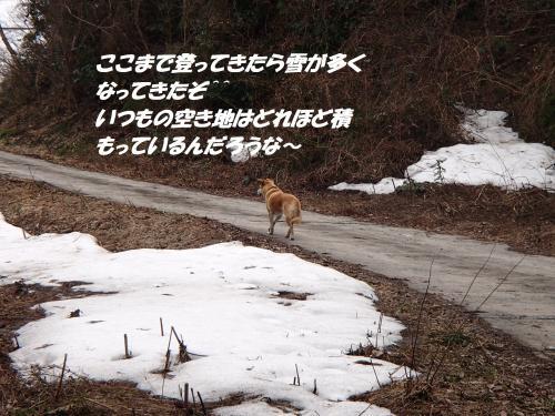 P3040547_convert_20160305081616.jpg