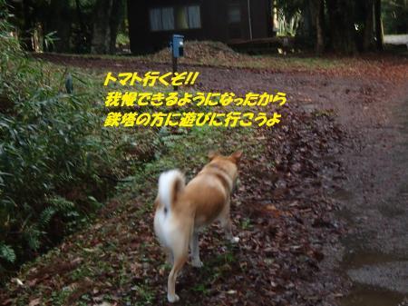 PC140239_convert_20151215143924.jpg
