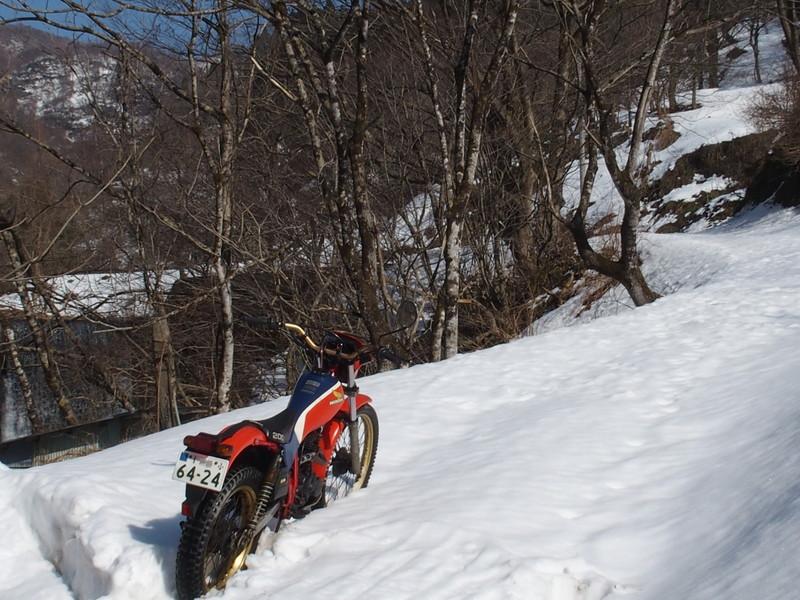 雪遊び (9)
