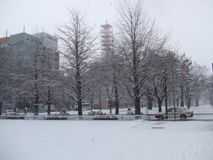 札幌雪景色20160118