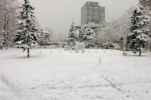 20160221札幌雪景色