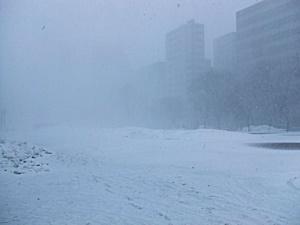 暴風雪20160229
