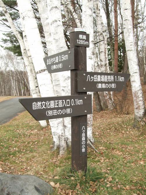 森の小径1129_看板