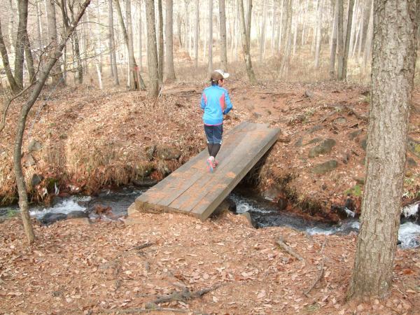 森の小径1129_小川を渡る橋