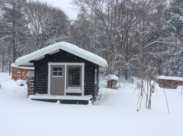 雪0118_イイッカと雪