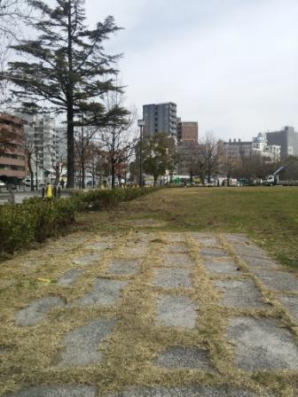 DSC_4274跡地植栽
