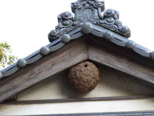 円應寺ー16