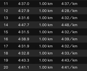 別大3週間30km2