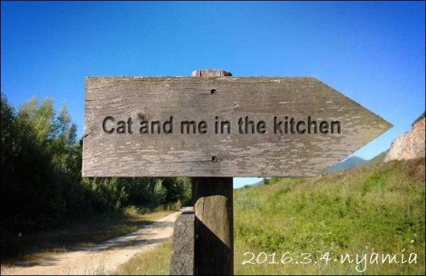 キッチンで