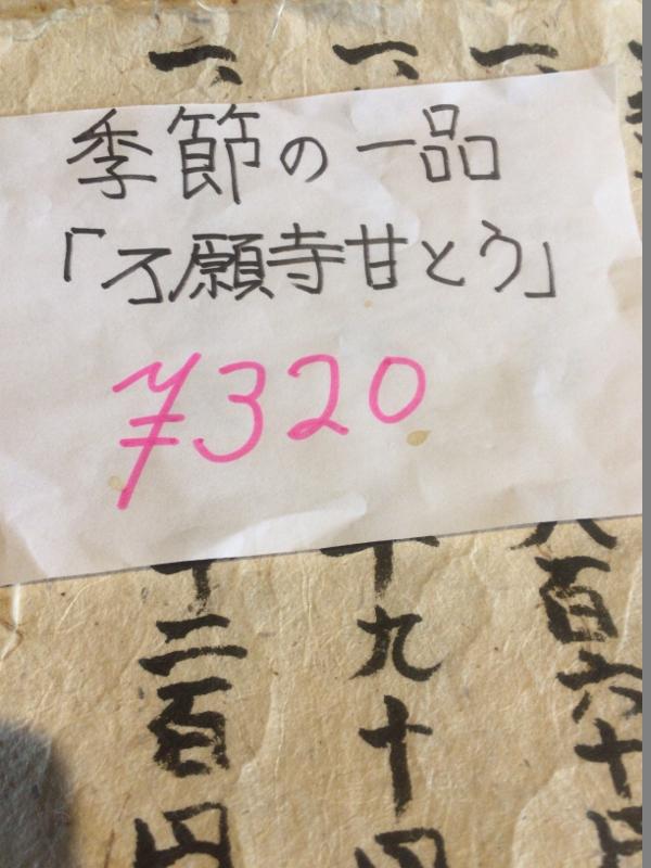 073 (800x600)