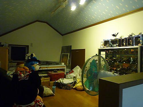 P1060111.jpg