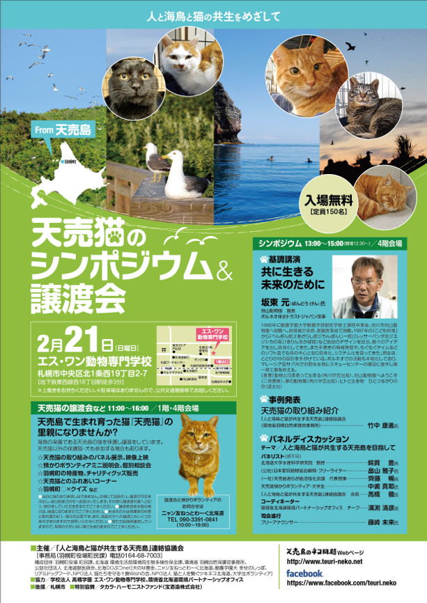 2016_0221_teuri_neko_m_01.jpg