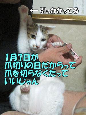 160107-01.jpg