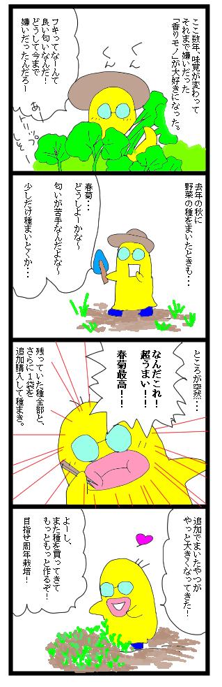 0229春菊