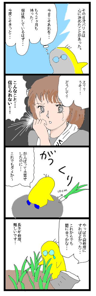 0301長ネギ