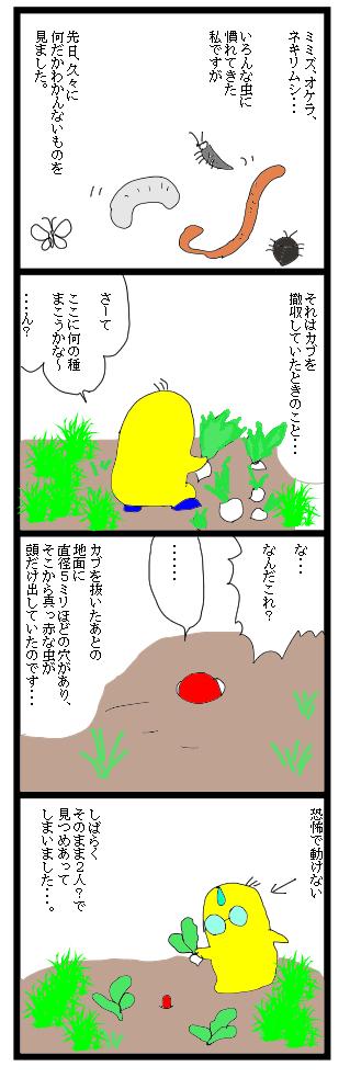 0304変な虫